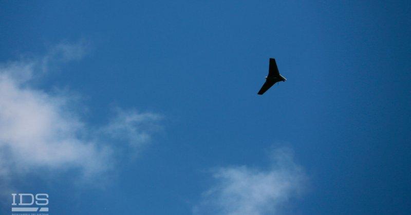 IA-17_MANTA_FLYING